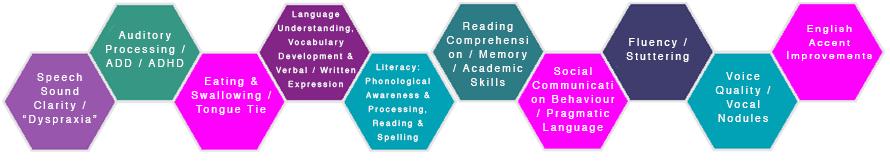 Speech Pathology Programs